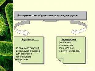 Бактерии по способу питания делят на две группы Анаэробные (разлагают органическ