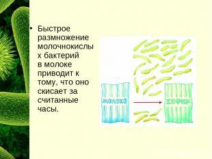 Быстрое размножение молочнокислых бактерий вмолоке приводит к тому, что оно ски