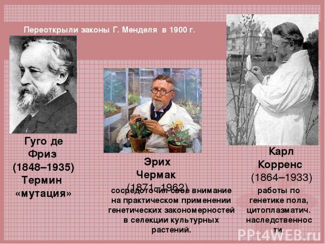 Гуго де Фриз (1848–1935) Термин «мутация» сосредоточил свое внимание на практическом применении генетических закономерностей в селекции культурных растений. Эрих Чермак (1871–1962) Карл Корренс (1864–1933) работы по генетике пола, цитоплазматич. нас…