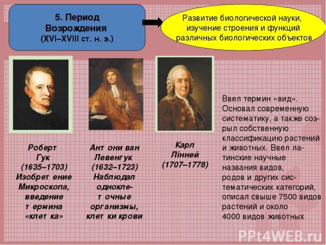 5. Период Возрождения (ХVІ–XVІІІ ст. н. э.) Развитие биологической науки, изучение строения и функций различных биологических объектов Роберт Гук (1635–1703) Изобретение Микроскопа, введение термина «клетка» Антони ван Левенгук (1632–1723) Наблюдал …