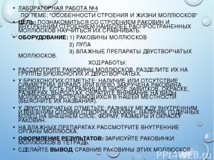 """ЛАБОРАТОРНАЯ РАБОТА №4 ПО ТЕМЕ: """"ОСОБЕННОСТИ СТРОЕНИЯ И ЖИЗНИ МОЛЛЮСКОВ"""" ЦЕЛЬ: П"""