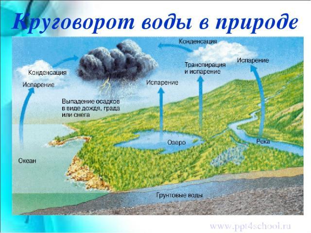 Круговорот воды в природе www.ppt4school.ru