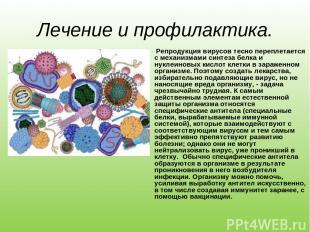 Лечение и профилактика. Репродукция вирусов тесно переплетается с механизмами си