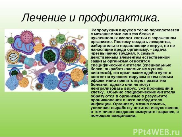 Лечение и профилактика. Репродукция вирусов тесно переплетается с механизмами синтеза белка и нуклеиновых кислот клетки в зараженном организме. Поэтому создать лекарства, избирательно подавляющие вирус, но не наносящие вреда организму, - задача чрез…