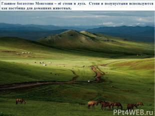 Главное богатство Монголии – её степи и луга. Степи и полупустыни используются к