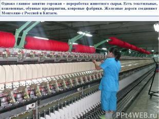 Однако главное занятие горожан – переработка животного сырья. Есть текстильные,