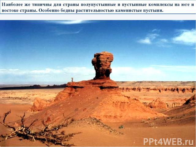 Наиболее же типичны для страны полупустынные и пустынные комплексы на юге и востоке страны. Особенно бедны растительностью каменистые пустыни.