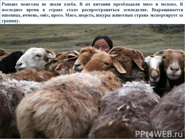 Раньше монголы не знали хлеба. В их питании преобладали мясо и молоко. В последнее время в стране стало распространяться земледелие. Выращивается пшеница, ячмень, овёс, просо. Мясо, шерсть, шкуры животных страна экспортирует за границу.
