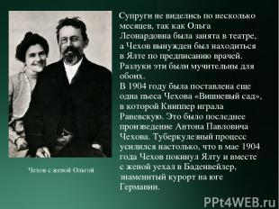 Супруги не виделись по несколько месяцев, так как Ольга Леонардовна была занята