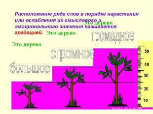 Это дерево Это дерево Это дерево Расположение ряда слов в порядке нарастания или