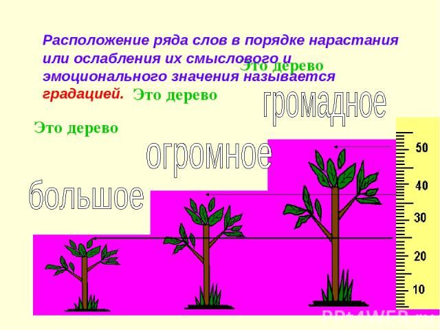 Это дерево Это дерево Это дерево Расположение ряда слов в порядке нарастания или ослабления их смыслового и эмоционального значения называется градацией.