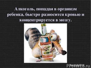 Алкоголь, попадая в организм ребенка, быстро разносится кровью и концентрируется