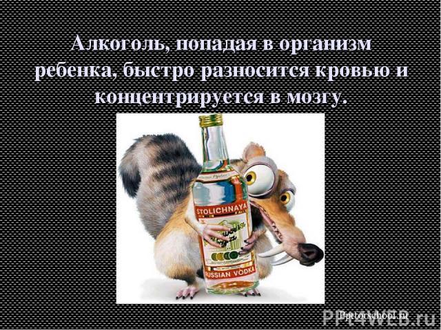 Алкоголь, попадая в организм ребенка, быстро разносится кровью и концентрируется в мозгу. Pptforschool.ru