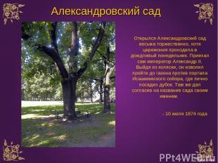 Открылся Александровский сад весьма торжественно, хотя церемония проходила в дож