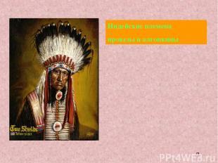 Индейские племена ирокезы и алгонкины