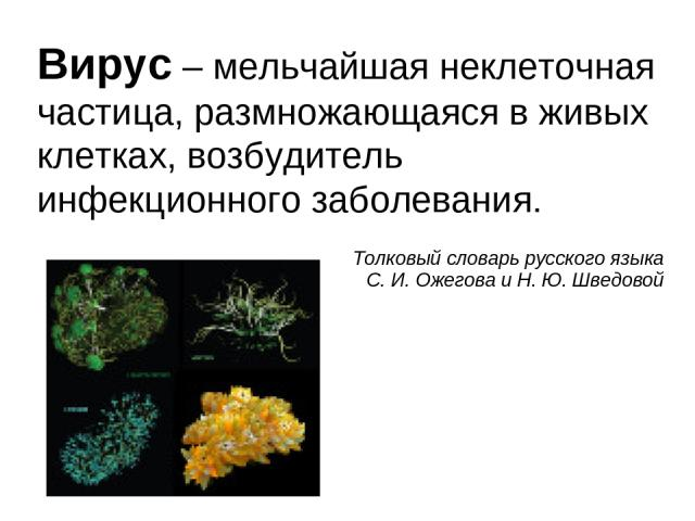 Вирус – мельчайшая неклеточная частица, размножающаяся в живых клетках, возбудитель инфекционного заболевания.