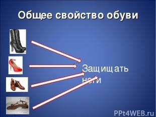 Общее свойство обуви Защищать ноги