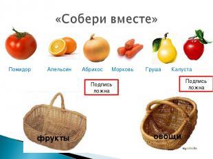 фрукты овощи Помидор Апельсин Абрикос Морковь Груша Капуста Подпись ложна Подпис