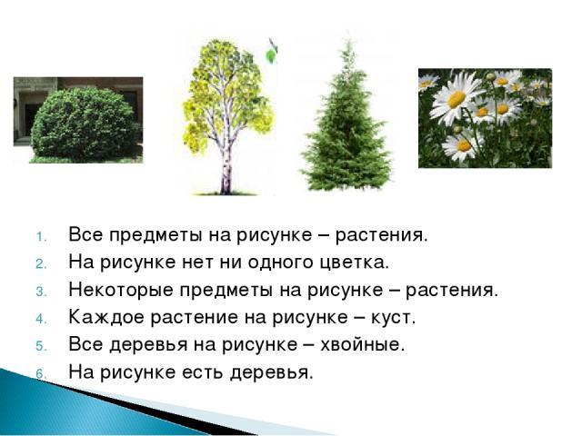 Все предметы на рисунке – растения. На рисунке нет ни одного цветка. Некоторые предметы на рисунке – растения. Каждое растение на рисунке – куст. Все деревья на рисунке – хвойные. На рисунке есть деревья.