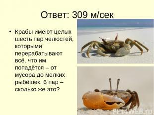Ответ: 309 м/сек Крабы имеют целых шесть пар челюстей, которыми перерабатывают в