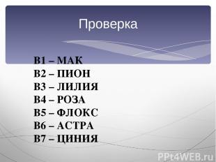 Проверка В1 – МАК В2 – ПИОН В3 – ЛИЛИЯ В4 – РОЗА В5 – ФЛОКС В6 – АСТРА В7 – ЦИНИ