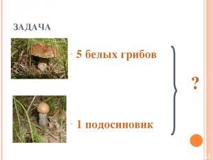 ЗАДАЧА 5 белых грибов ? 1 подосиновик