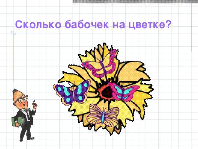 Сколько бабочек на цветке?
