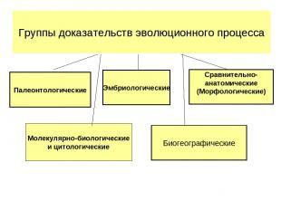 Палеонтологические Эмбриологические Сравнительно- анатомические (Морфологические
