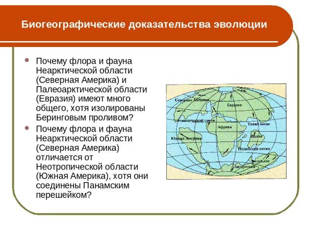 Биогеографические доказательства эволюции Почему флора и фауна Неарктической области (Северная Америка) и Палеоарктической области (Евразия) имеют много общего, хотя изолированы Беринговым проливом? Почему флора и фауна Неарктической области (Северн…