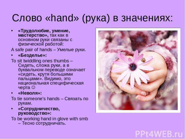 Слово «hand» (рука) в значениях: «Трудолюбие, умение, мастерство», так как в основном руки связаны с физической работой: A safe pair of hands – Умелые руки. «Безделье»: To sit twiddling ones thumbs – Сидеть, сложа руки, а в буквальном переводе означ…
