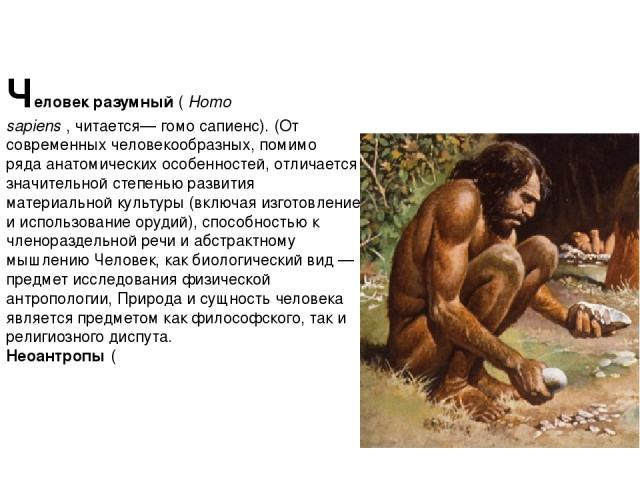 Челове к разу мный(Homo sapiens,читается— гомо сапиенс). (От современныхчеловекообразных, помимо рядаанатомических особенностей, отличается значительной степенью развития материальной культуры (включая изготовление и использование орудий), спо…