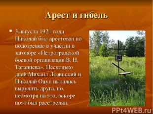 Арест и гибель 3 августа 1921 года Николай был арестован по подозрению в участии