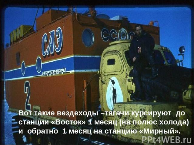 Вот такие вездеходы –тягачи курсируют до станции «Восток» 1 месяц (на полюс холода) и обратно 1 месяц на станцию «Мирный».