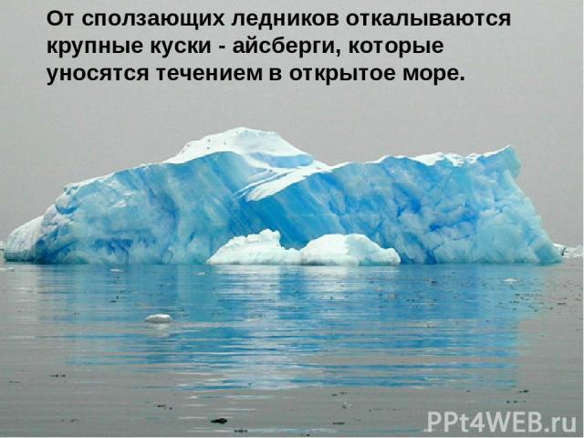 От сползающих ледников откалываются крупные куски - айсберги, которые уносятся течением в открытое море.