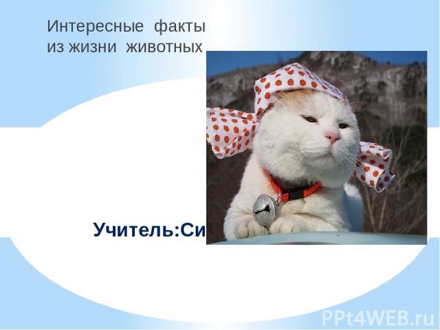 Интересные факты из жизни животных Учитель:Синепалова Г.В.