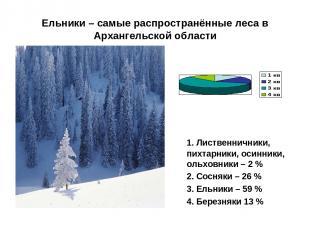 Ельники – самые распространённые леса в Архангельской области 1. Лиственничники,