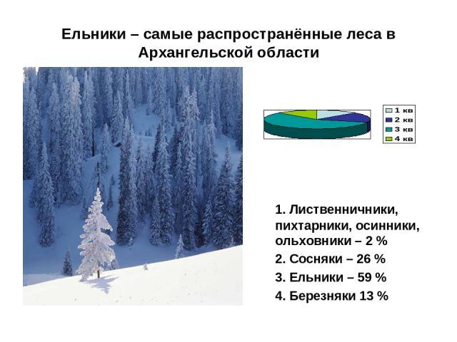 Ельники – самые распространённые леса в Архангельской области 1. Лиственничники, пихтарники, осинники, ольховники – 2 % 2. Сосняки – 26 % 3. Ельники – 59 % 4. Березняки 13 %