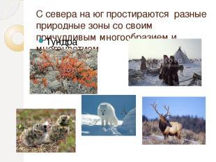 С севера на юг простираются разные природные зоны со своим причудливым многообра