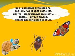 Все насекомые питаются по-разному. Одни едят растения, другие – мельчайшую живно
