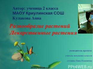 Автор: ученица 2 класса МАОУ Криулинская СОШ Кулакова Анна Разнообразие растений