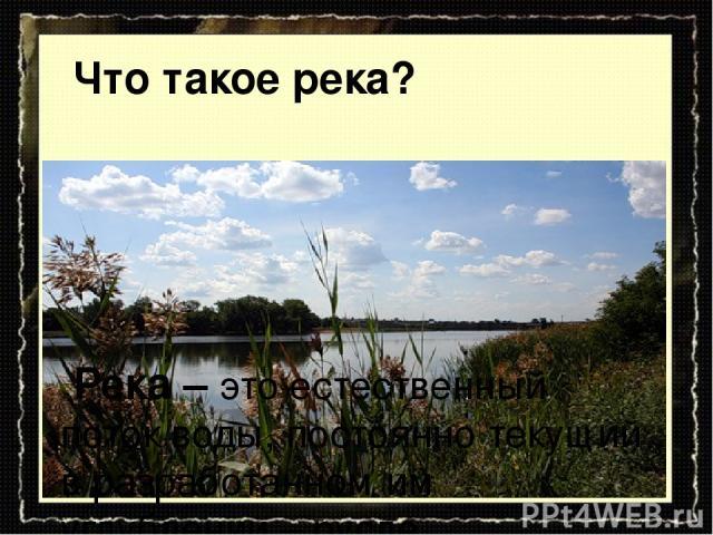 Река – это естественный поток воды, постоянно текущий в разработанном им углублении – русле. Что такое река?