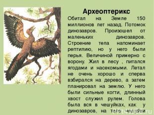 Археоптерикс Обитал на Земле 150 миллионов лет назад. Потомок динозавров. Произо