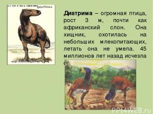 Диатрима – огромная птица, рост 3 м, почти как африканский слон. Она хищник, охо