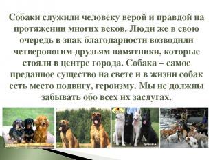 Собаки служили человеку верой и правдой на протяжении многих веков. Люди же в св