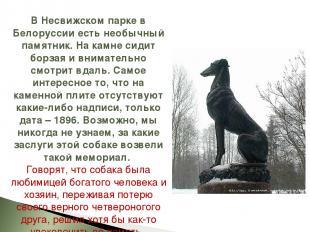 В Несвижском парке в Белоруссии есть необычный памятник. На камне сидит борзая и
