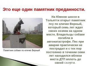 На Южном шоссе в Тольятти открыт памятник псу по кличке Верный, который семь лет