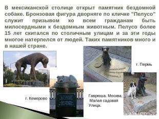 В мексиканской столице открыт памятник бездомной собаке. Бронзовая фигура дворня