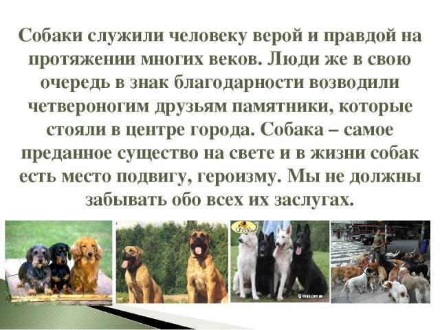 Собаки служили человеку верой и правдой на протяжении многих веков. Люди же в свою очередь в знак благодарности возводили четвероногим друзьям памятники, которые стояли в центре города. Собака – самое преданное существо на свете и в жизни собак есть…
