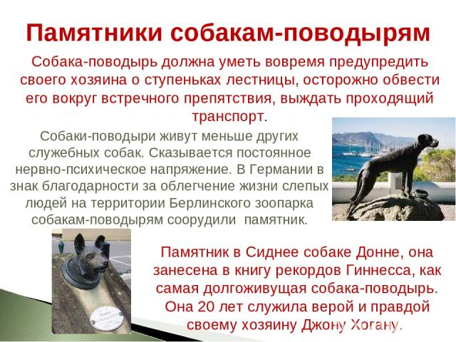Памятники собакам-поводырям Собаки-поводыри живут меньше других служебных собак. Сказывается постоянное нервно-психическое напряжение. В Германии в знак благодарности за облегчение жизни слепых людей на территории Берлинского зоопарка собакам-поводы…