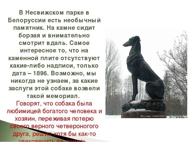 В Несвижском парке в Белоруссии есть необычный памятник. На камне сидит борзая и внимательно смотрит вдаль. Самое интересное то, что на каменной плите отсутствуют какие-либо надписи, только дата – 1896. Возможно, мы никогда не узнаем, за какие заслу…